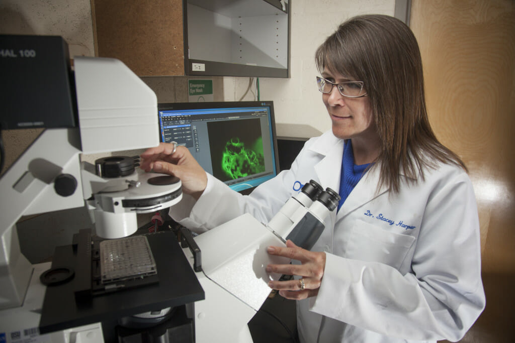 Oregon State University researcher Stacey Harper investigates nanoparticles' effects on health and the environment.