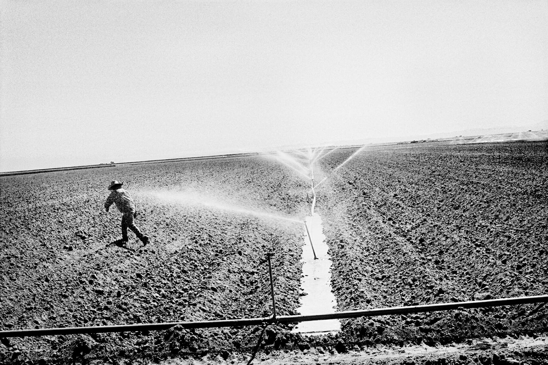 A worker waters a tomato field near Huron, CA.
