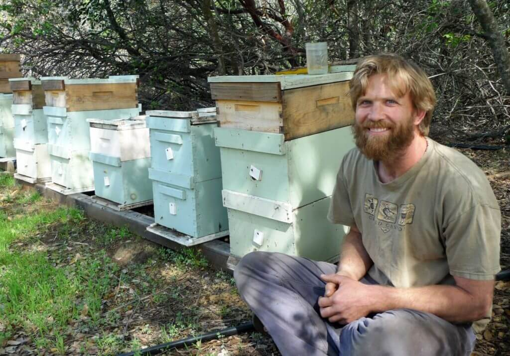 Sean Kriletich, farmer and beekeeper, estimates tens of thousands of hives were displaced by the Butte Fire.